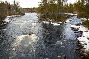 Bäche mit moorigem Wasser durchziehen die Landschaft Mittelschwedens