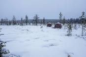 Unsere Ansitzhütten bezogen wir schon um 2h früh und mussten bis 9h bei Kälte ausharren