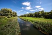 Einser-Kanal