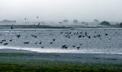 Sturm an der Darscho-Lacke