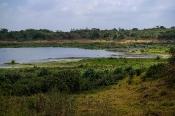 Savannen-Landschaft